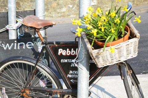 bike daffodils
